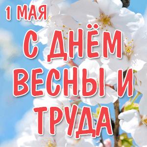Поздравляем всех с Праздником Весны и Труда, с 1 Мая!
